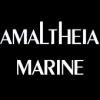Amaltheia Marine